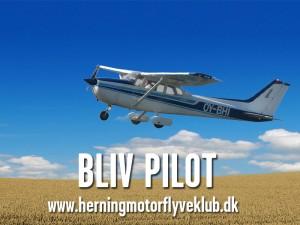 2013_bliv-pilot-web