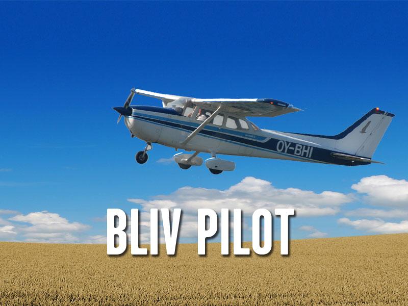 2013_bliv-pilot